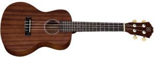 aprender a tocar el ukelele concierto